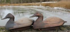 C7 Pair of Maryland Folk Art  holllow Canvasback Decoys carved by Robert Mende of Eastern Shore Maryland