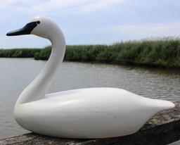 C391 Fully size  Swan carved by Louis J. Tyler, signed and dated 1989, with glass eyes, in original paint